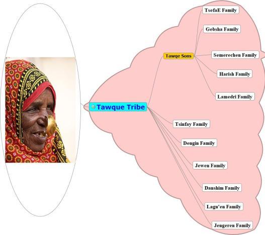 Tawqe tribe